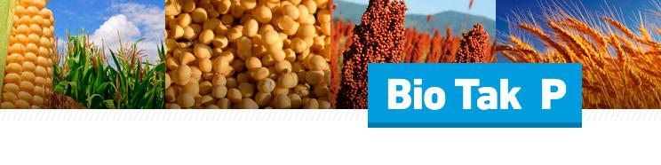 BIOTAK P - Promotor de crecimiento vegetal y solubilizador de Fósforo, Hierro, Magnesio y Manganeso en el suelo - Agrimarketing