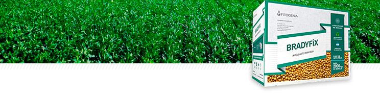 Bradyfix - Inoculante para soja - Agrimarketing