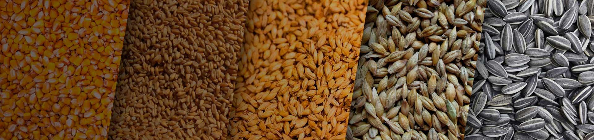 Conozca nuestros productos de inoculación - Agrimarketing
